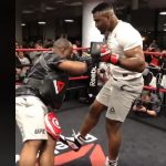 Video: Francis Ngannou demostró su otra técnica letal: El low kick