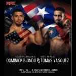MFC 16: MMA en Chile tiene su última fiesta del año