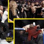 Los duros castigos que arriesgan Khabib y Conor McGregor tras UFC 229