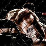 Columna: El lucro y las falsas promesas de las MMA chilenas