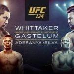 Horario y Cartelera del UFC 234