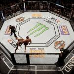¿Cuál es la disciplina que mejor rendimiento ha tenido en UFC?