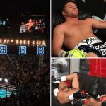 El día que el boxeo le tuvo miedo a UFC 244