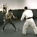 Las guerras de gimnasios que dieron origen al UFC